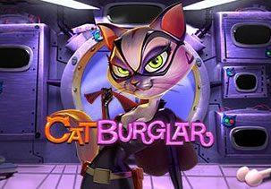 Cat Burgler image