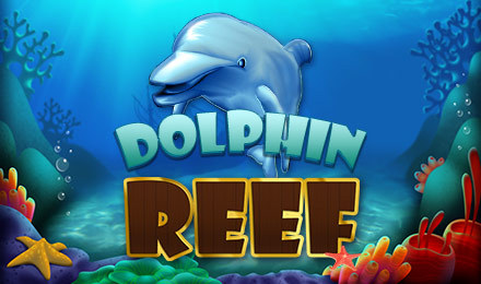 Dolphin Reef image
