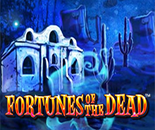 Fortunes Of The Dead image