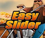Easy Slider image