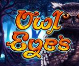 Owl Eyes image