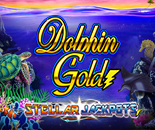 Dolphin Gold Jackpot image