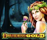 Druidess Gold image