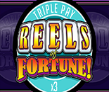 Reels Of Fortune Triple Pay image