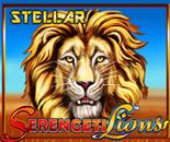 Serengeti Lions image