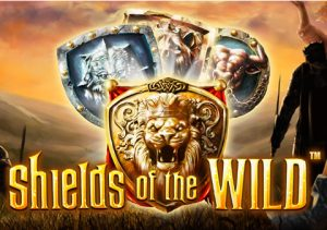 Shields Of The Wild image