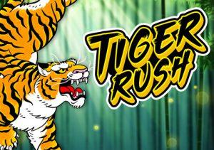 Tiger Rush image