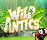 Wild Antics image