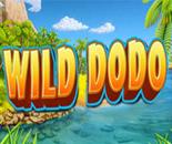 Wild Dodo image
