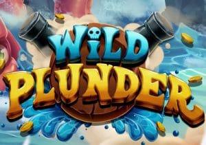 Wild Plunder image