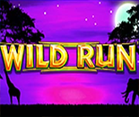 Wild Run image