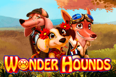 Wonder Hounds image