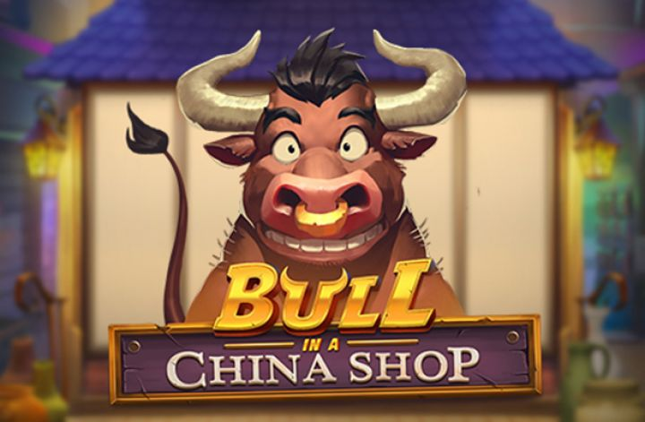 Bull In A China Shop image