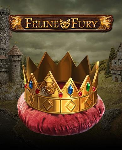 Feline Fury image