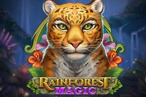 Rainforest Magic image