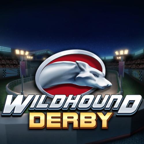 Wildhound Derby image
