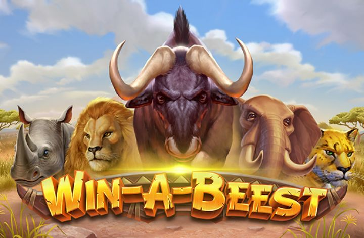 Win A Beest image
