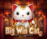 Big Win Cat image