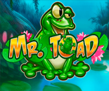 Mr Toad image