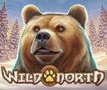 Wild North image