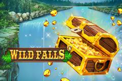 Wild Falls image