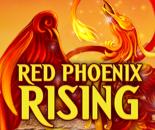 Red Phoenix Rising image