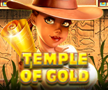 Temple Of Gold image