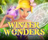 Winter Wonders image