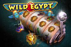 Wild Egypt image