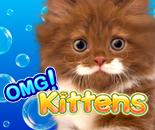 OMG Kittens! image