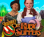 Wizard of Oz Ruby Slippers image