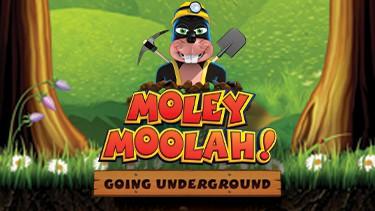 Moley Moolah image