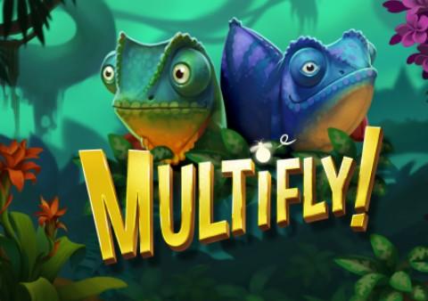 Multifly image