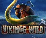 Vikings Go Wild image