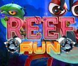 Reef Run image