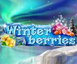 Winterberries image