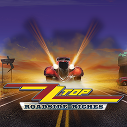 ZZTop Roadside Riches image